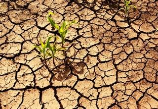 FINACTU s'affirme comme le leader dans le conseil en assurances climatiques